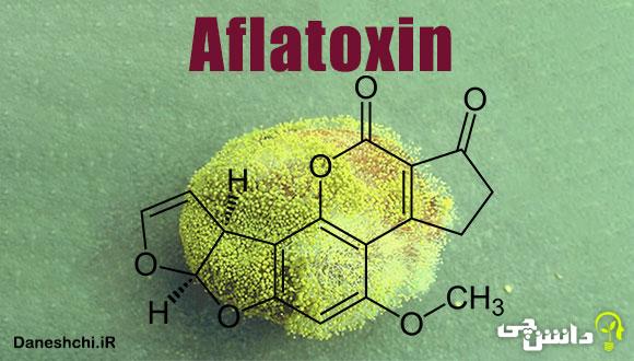آفلاتوکسین چیست و از کجا آمد؟