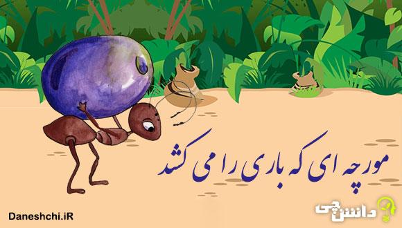 توصیف و انشا مورچه ای که باری را می کشد