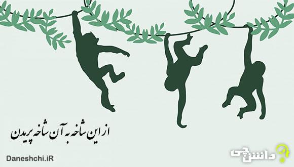 معنی از این شاخه به آن شاخه پریدن