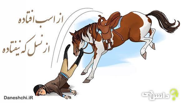 ضرب المثل از اسب افتاده از نسل که نیفتاده