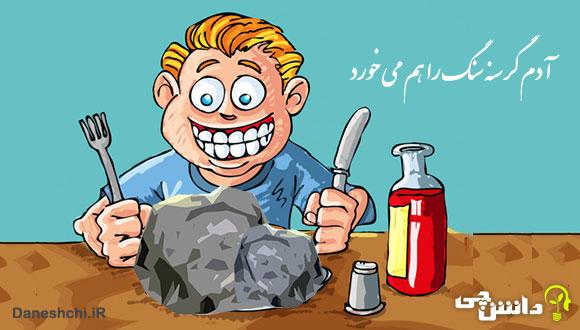 آدم گرسنه سنگ را هم می خورد