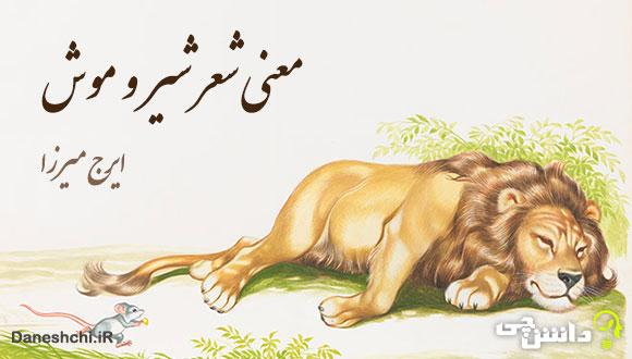 معنی شعر شیر و موش