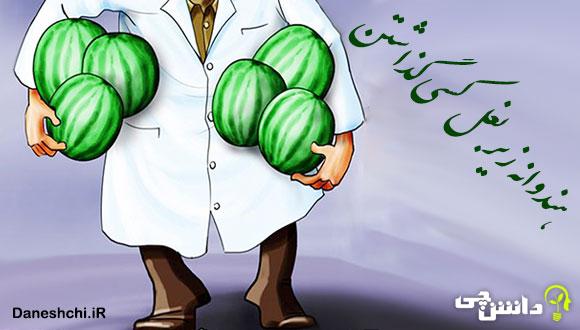هندوانه زیر بغل کسی گذاشتن