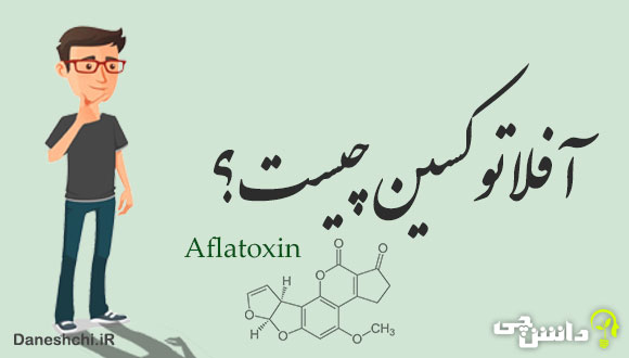 آفلاتوکسین چیست؟