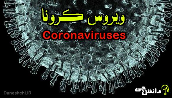 تحقیق در مورد بیماری کرونا و علائم، پیشگیری و درمان آن