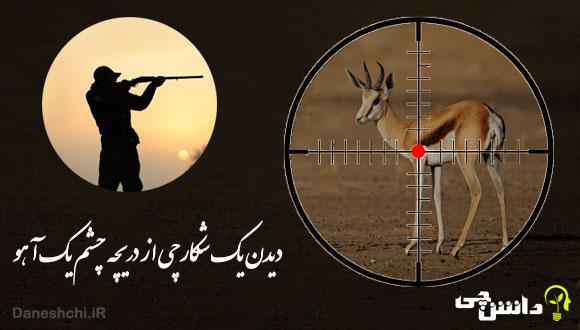 توصیف و انشا دیدن یک شکارچی از دریچه چشم یک آهو