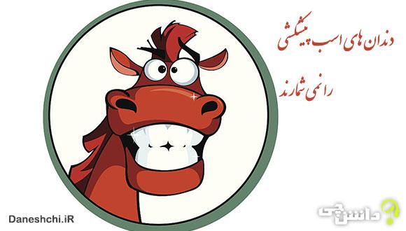 دندان اسب پیشکشی را نمی شمارند