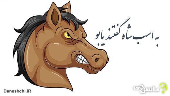 معنی به اسب شاه گفتند یابو