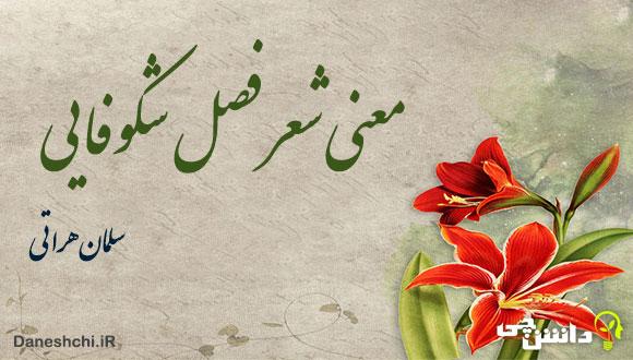 معنی شعر فصل شکوفایی از سلمان هراتی