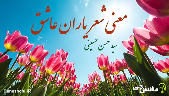 معنی شعر یاران عاشق از سید حسن حسینی