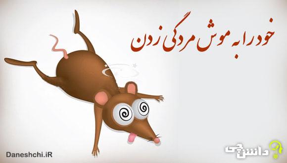 خود را به موش مردگی زدن