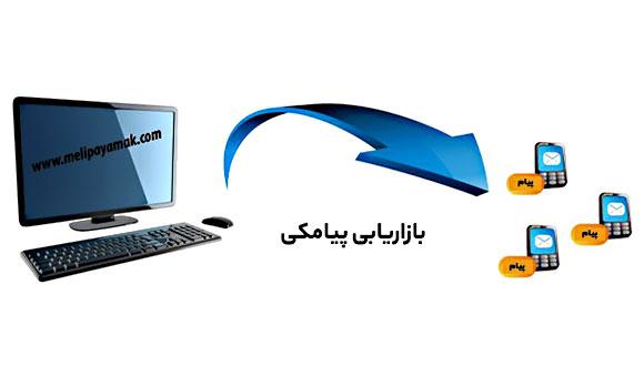 ملی پیامک: خدمات ارسال پیامک تکی و انبوه